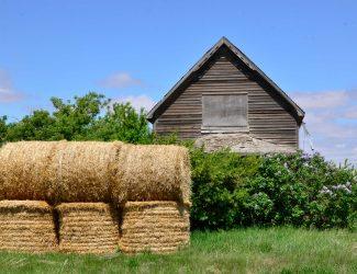 Saskatchewan Barn