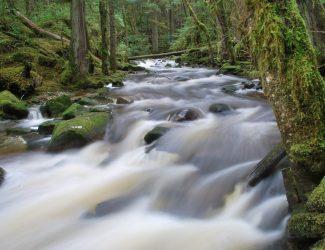 waterfall.8